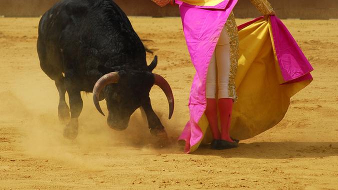 csm_corrida-800-450-ok_5680c9292a