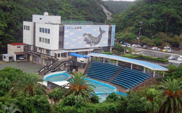 taiji-whale-museum2